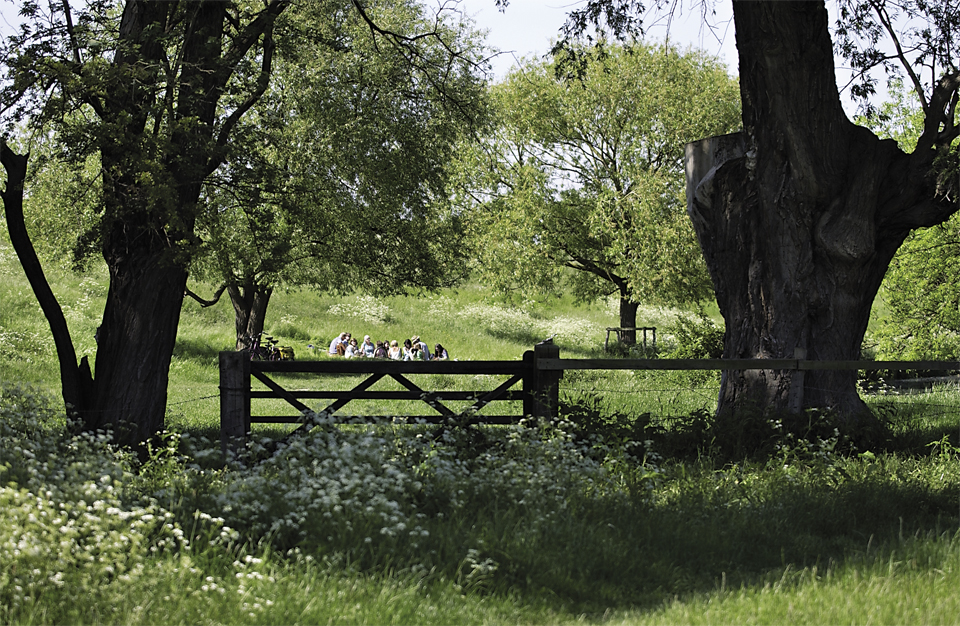 A large group having a picnic in Grantchester Meadows by Cambridge Photographer Richard Bowring